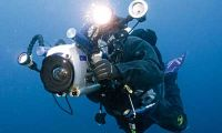Tips for Underwater Photography