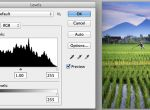 Understanding Histogram in Digital Photography