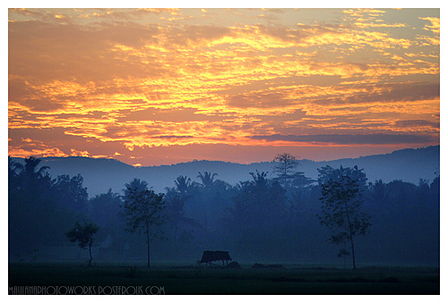 Tips for Photographing Stunning Sunrise