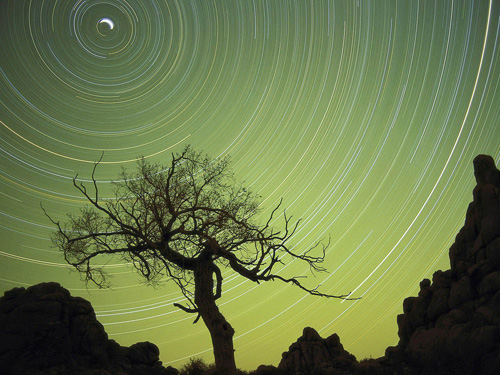 Star Trails Photography Tips and Tricks