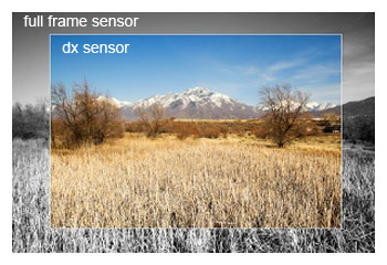 Photography Myth - FX sensor vs DX sensor