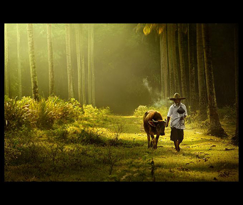 Rarindra Prakarsa Daily Life Photography