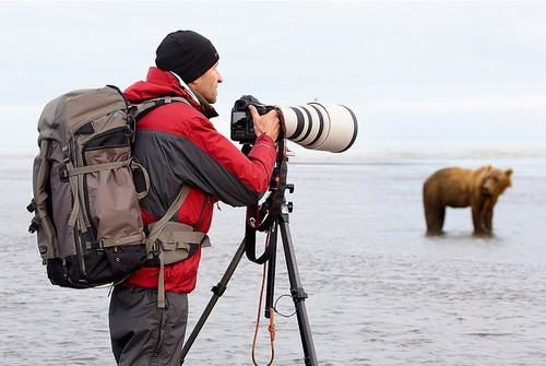 Wildlife Photography Tips and Tutorial - with Chris McLennan