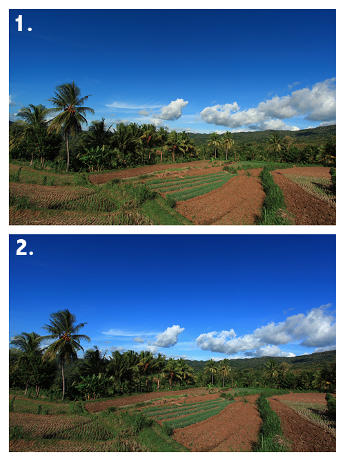 UV filter vs no UV filter – sample 2