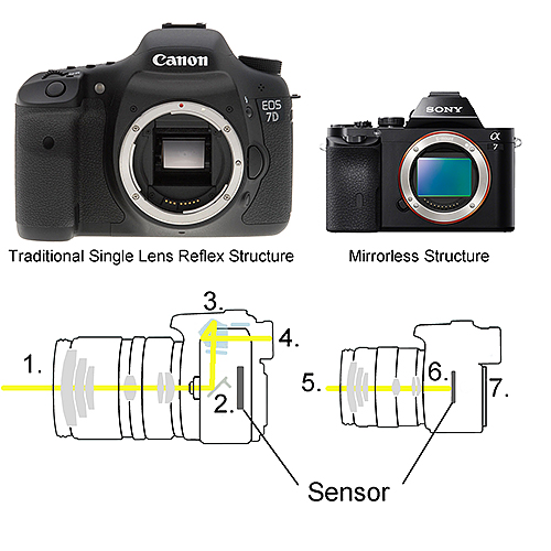 DSLR vs Mirrorless Camera Structure