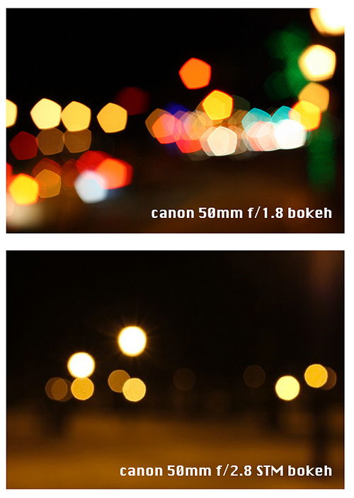 Canon 50mm vs Canon 40mm STM Bokeh