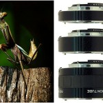 The Advantages and Disadvantage of Extension Tube for Macro Photography