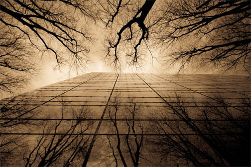 Beginner's Guide to Architectural Photography - last winters arms