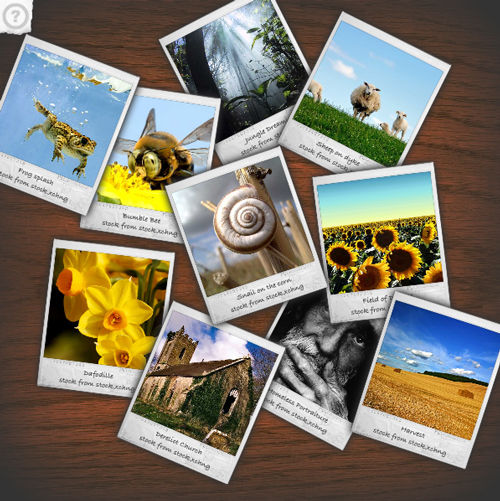 Free software download: Digital Photo Slide Show