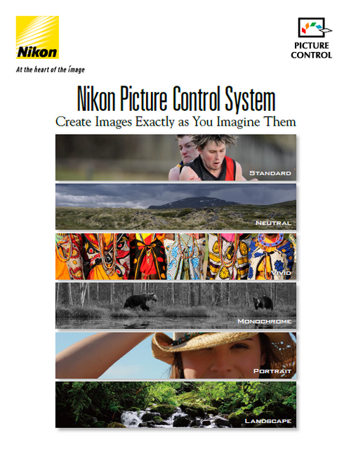 Nikon Picture Control System