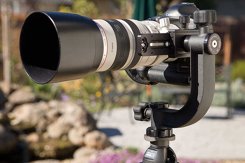 Tips and Tricks to Choose The Best Tripod