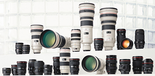 Which Lens should I Buy Next?