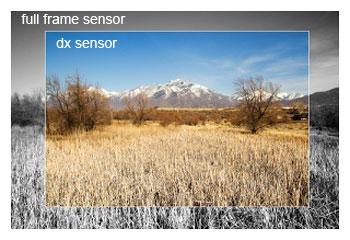 Photography Myth – FX sensor vs DX sensor
