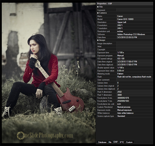 What is EXIF Data in Digital Photography?