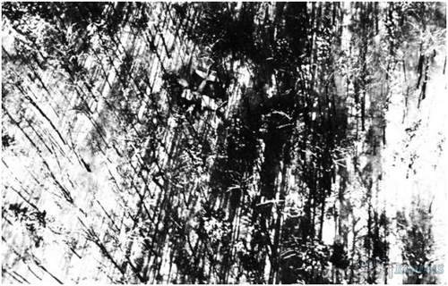 First Photograph to be sent via Cable