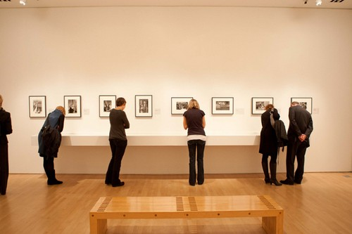 Photography business – Photography Exhibition