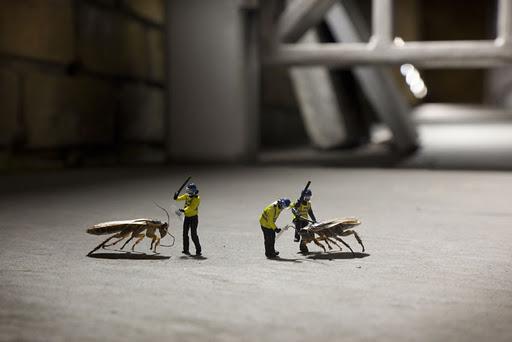 Slinkachu Photography - animals
