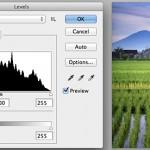 Understanding Histogram in Digital Photography
