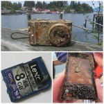 Drown For Two Years Long, This Memory Card Survived!