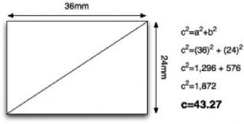 Sensor Size