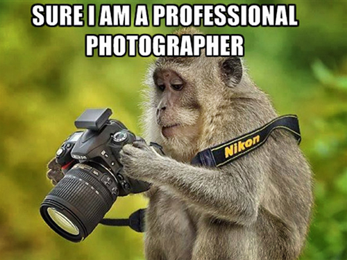 Annoying Photographer